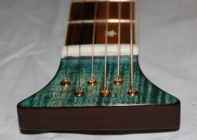 cool custom aqua blue backwards headstock guitar